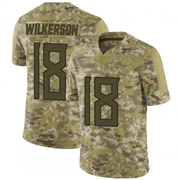 Youth Nike Tennessee Titans Kristian Wilkerson Camo 2018 Salute to Service Jersey - Limited