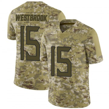 Youth Nike Tennessee Titans Nick Westbrook Camo 2018 Salute to Service Jersey - Limited